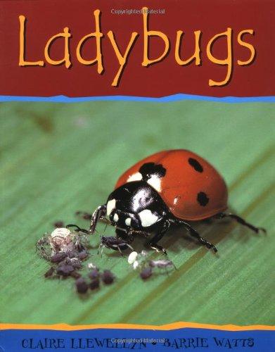 9780531148266: Ladybugs (Minibeasts)