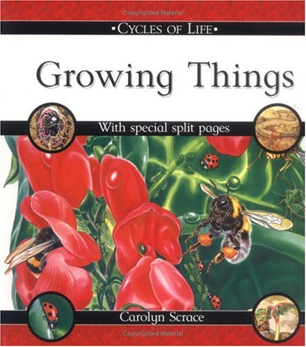 9780531148419: Growing Things (Cycles of Life)