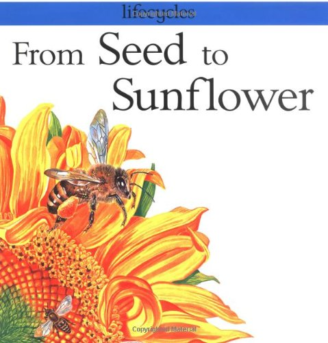 9780531153345: From Seed to Sunflower (Lifecycles)