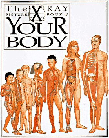 Your Body: X Ray Picture Book (X-Ray Picture Books): Senior, Kathryn; Salariya, David