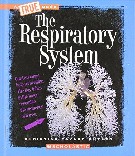 9780531168622: The Respiratory System (True Books)