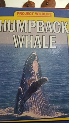 Humpback Whale (Project Wildlife Series): Michael Bright