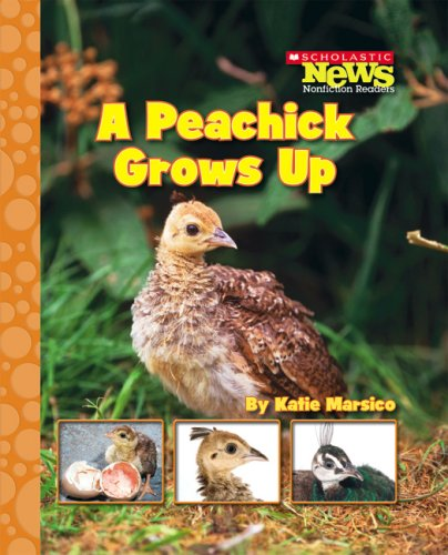 9780531186992: A Peachick Grows Up (Scholastic News Nonfiction Readers: Life Cycles)