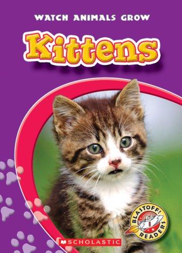 Kittens: Colleen Sexton