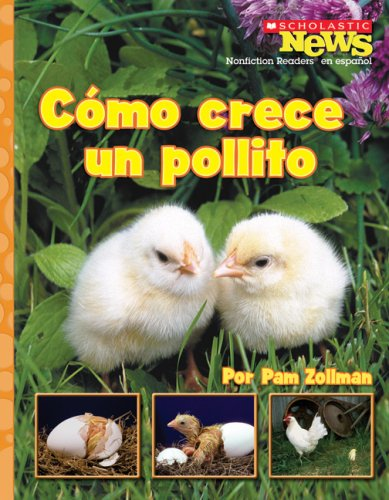 9780531207062: Cómo Crece un Pollito (Scholastic News Nonfiction Readers En Espanol)