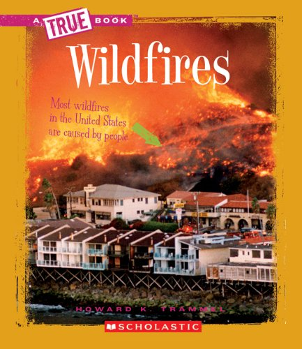 9780531213551: Wildfires (A True Book)