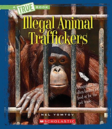9780531214640: Illegal Animal Traffickers (A True Book)