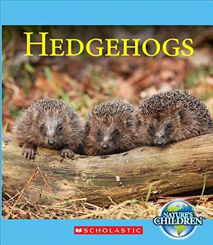 9780531214930: Hedgehogs (Nature's Children)