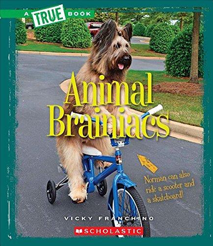 Animal Brainiacs (True Books: Amazing Animals): Franchino, Vicky