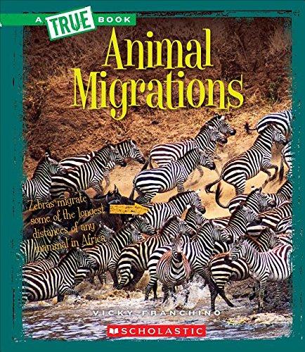 Animal Migrations (True Books: Amazing Animals): Franchino, Vicky