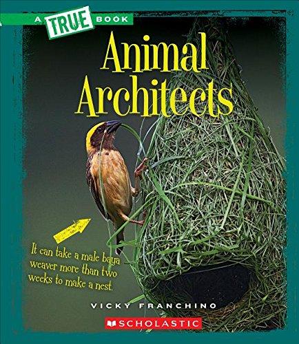 Animal Architects (True Books: Amazing Animals): Franchino, Vicky