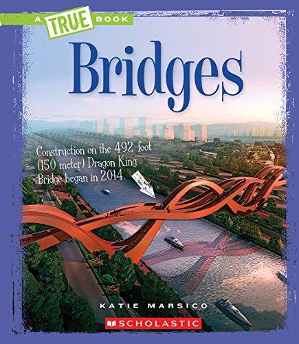 9780531224793: Bridges (A True Book)