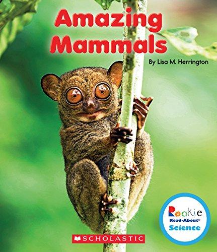 9780531226001: Amazing Mammals (Rookie Read-About Science: Strange Animals)