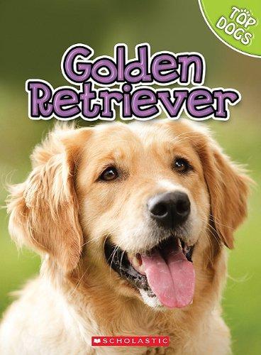 9780531249307: Golden Retriever (Top Dogs)