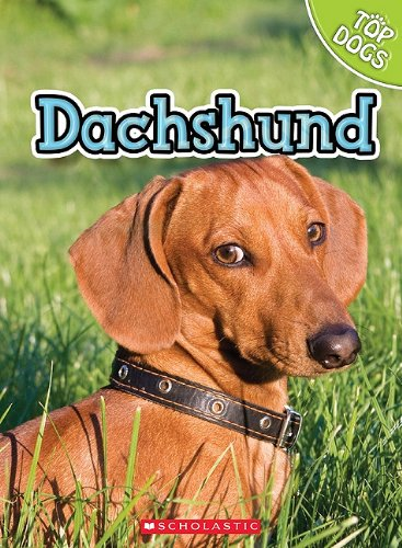 9780531249321: Dachshund (Top Dogs)