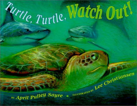 9780531302859: Turtle, Turtle, Watch Out!