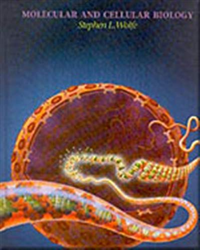 9780534124083: Molecular and Cellular Biology