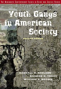 9780534527457: Youth Gangs in American Society
