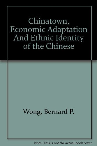 9780534971373: Chinatown, Economic Adaptation And Ethnic Identity of the Chinese