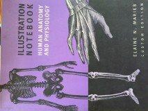 Illustration Notebook (Human Anatomy and Physiology): Marieb, Elaine N.