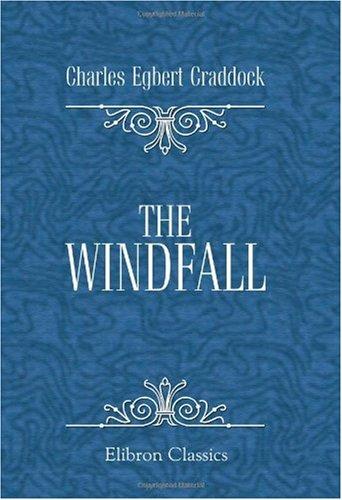 9780543974464: The Windfall: A Novel
