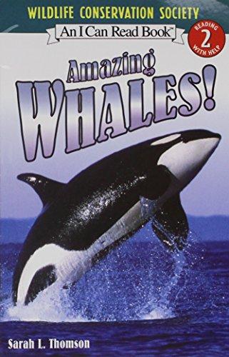 9780544102798: Journeys: Common Core Trade Book Grade 1 Amazing Whales!
