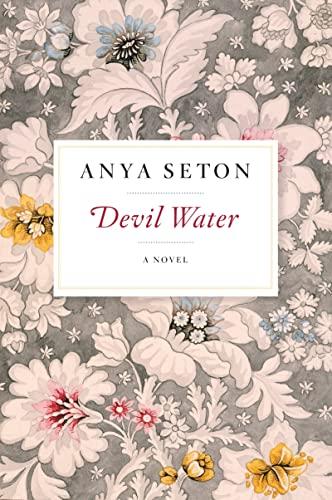 9780544240407: Devil Water: A Novel