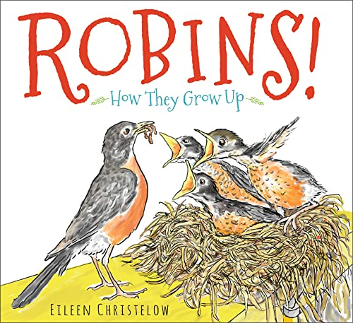 9780544442894: Robins!: How They Grow Up