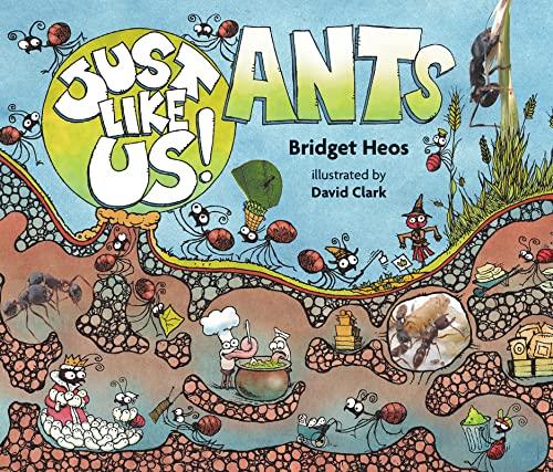 Just Like Us! Ants (Hardback or Cased Book)
