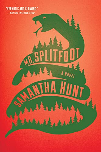 9780544811812: Mr. Splitfoot