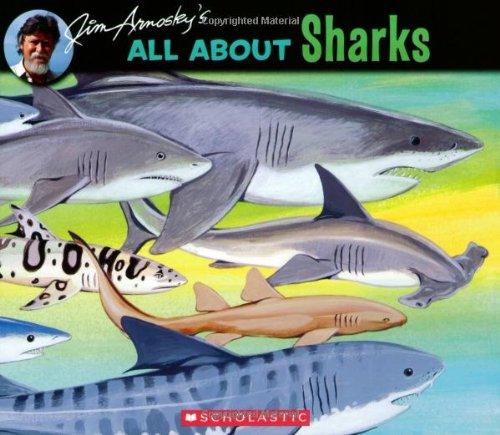 9780545026000: All About Sharks