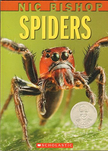 9780545057363: Spiders