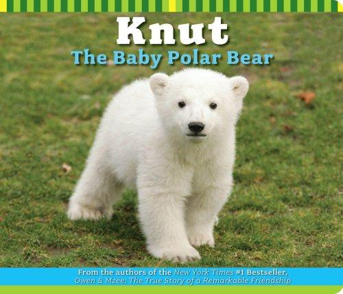 Knut the Baby Polar Bear: Juliana Lee Hatkoff,Craig