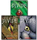 9780545064002: Back to the Divide