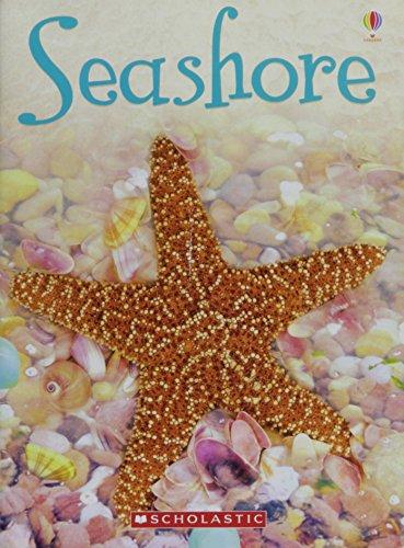 9780545109765: Seashore (Usborne Beginners)