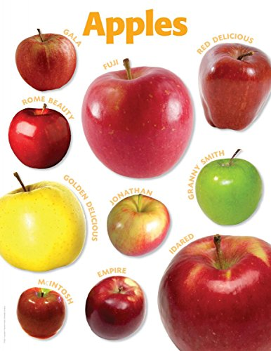 9780545118934: Apples Photo Chart