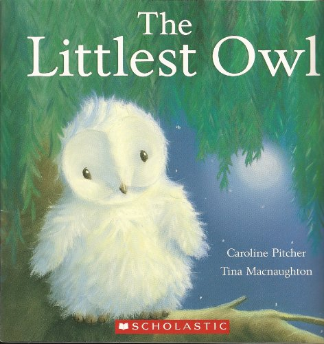 The Littlest Owl: Caroline Pitcher