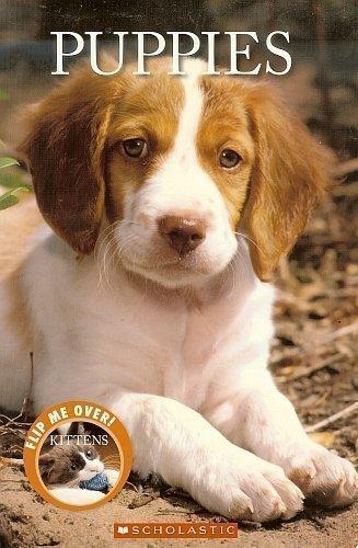Puppies/Kittens: Tangerine Press/Scholastic