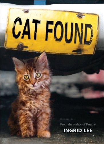 9780545317702: Cat Found