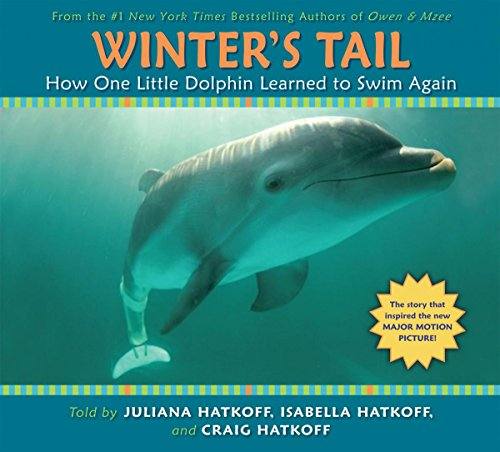 9780545348300: Winter's Tail: How One Little Dolphin Learned to Swim Again