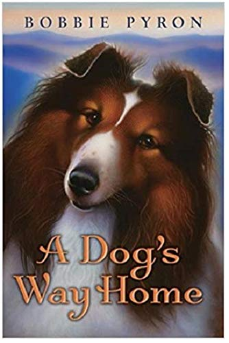 9780545428484: A Dog's Way Home