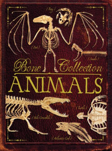 9780545576284: Bone Collection: Animals
