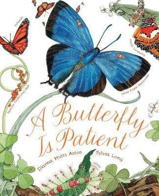 9780545605465: A Butterfly Is Patient