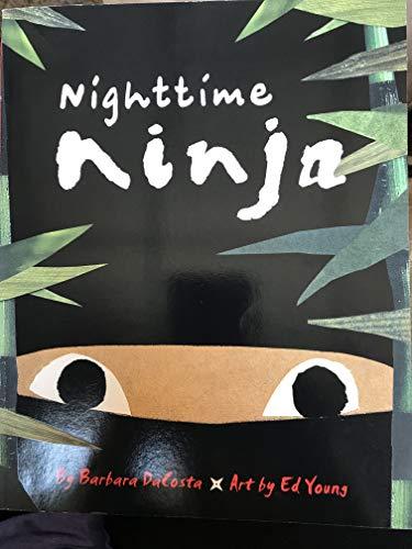 9780545697873: Nighttime Ninja
