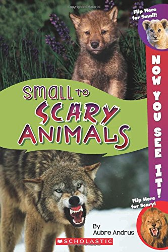 9780545889605: Now You See It! Small to Scary Animals