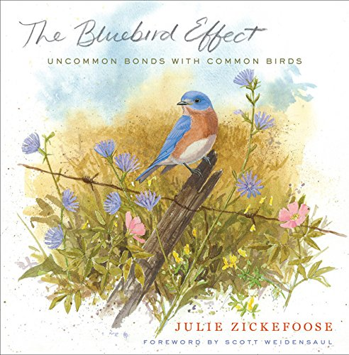 9780547003092: The Bluebird Effect: Uncommon Bonds with Common Birds