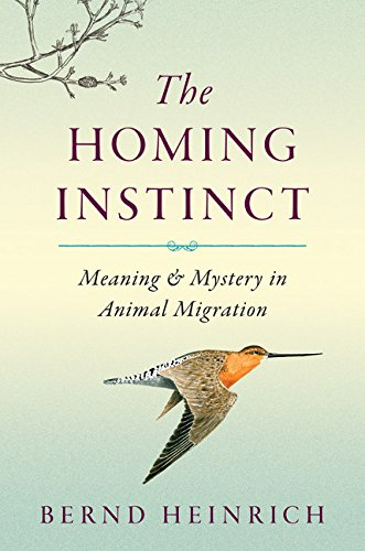 9780547198484: The Homing Instinct: Meaning and Mystery in Animal Migration