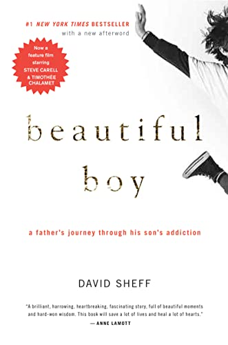 9780547203881: Beautiful Boy: A Father's Journey Through His Son's Addiction