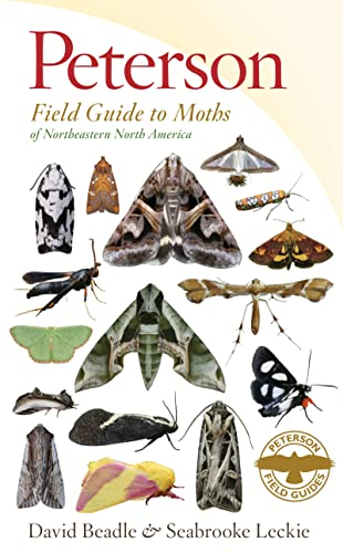 9780547238487: Peterson Field Guide to Moths of Northeastern North America (Peterson Field Guides)