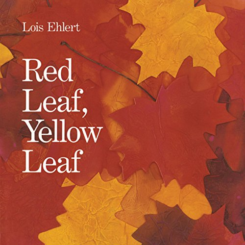 9780547328584: Red Leaf, Yellow Leaf Big Book